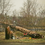 Snapped poles and downed lines on M24 near Buffalo Wild Wings.