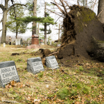 Fallen tree near Emmons family gravestones in Evergreen Cemetery, Lake Orion.