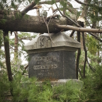 "Fallen tree resting on the headstone ""John P. Kelly and Jane A. [Maiden name obscurred] in Evergreen Cemtery"