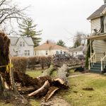 Snapped tree hit / damaged house before falling on a truck and trailer. Slater Street at Jackson Street, Lake Orion.